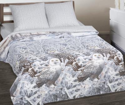 Комплект постельного белья Арт-постель 914 поплин Хранители снов